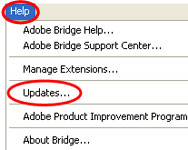 updating settings in adobe bridge cs5
